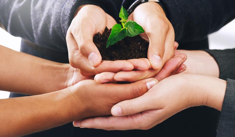 La sustentabilidad o sostenibilidad son dos conceptos que el nuevo consumidor busca y determinan sus decisiones de compra